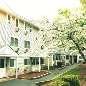 Pine Homes Development pic good blossoms 5.14 Better Edit